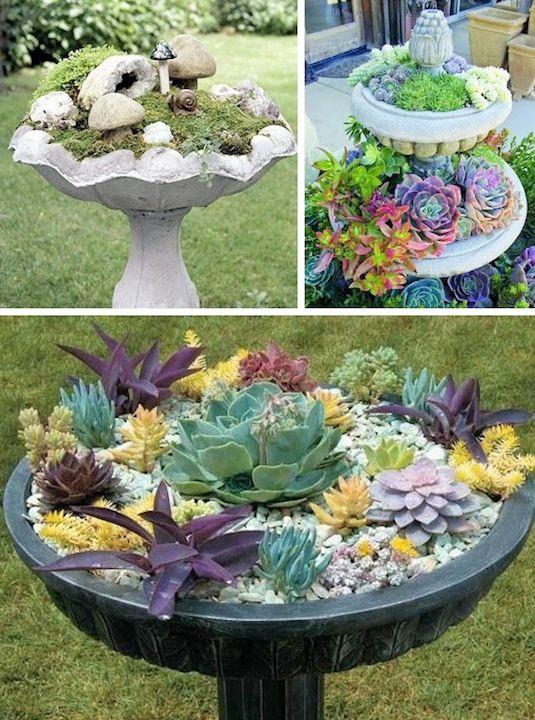 24 Idéias Creative Container Garden |  Plantadores de banho de aves!