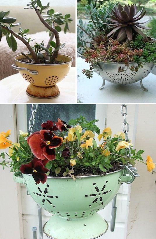 24 Idéias Creative Container Garden |  Use um filtro de massa antigo como plantador!