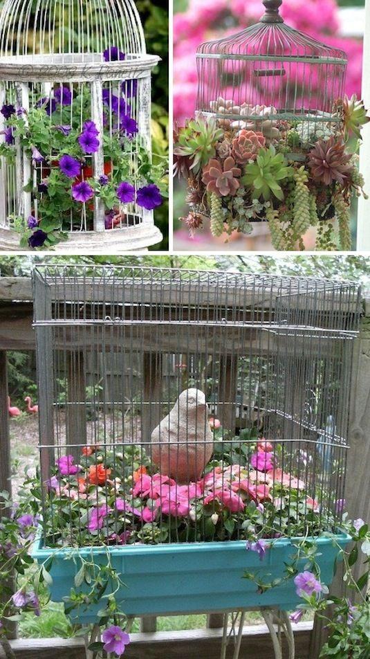 24 Idéias Creative Container Garden |  Use gaiolas de pássaros como plantadores!