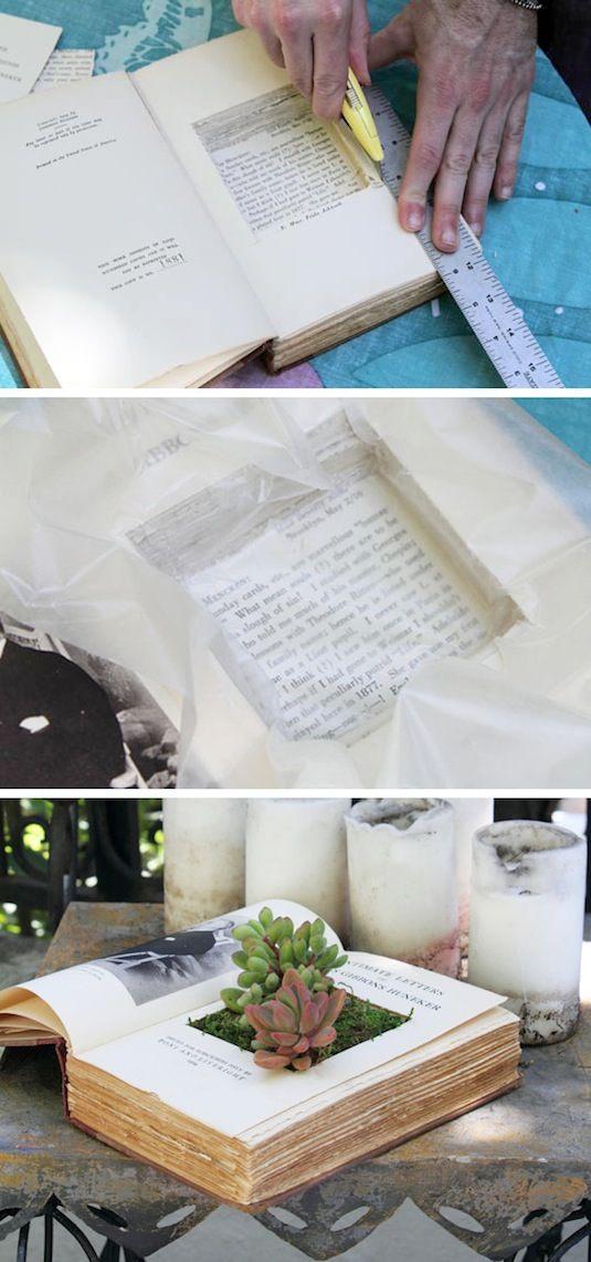 24 Idéias Creative Container Garden |  Use livros como plantadores!