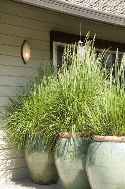 13 Attractive Ways To Add Privacy Your Yard Deck With Lots Of Pictures